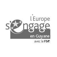 logoFSE-sitePS