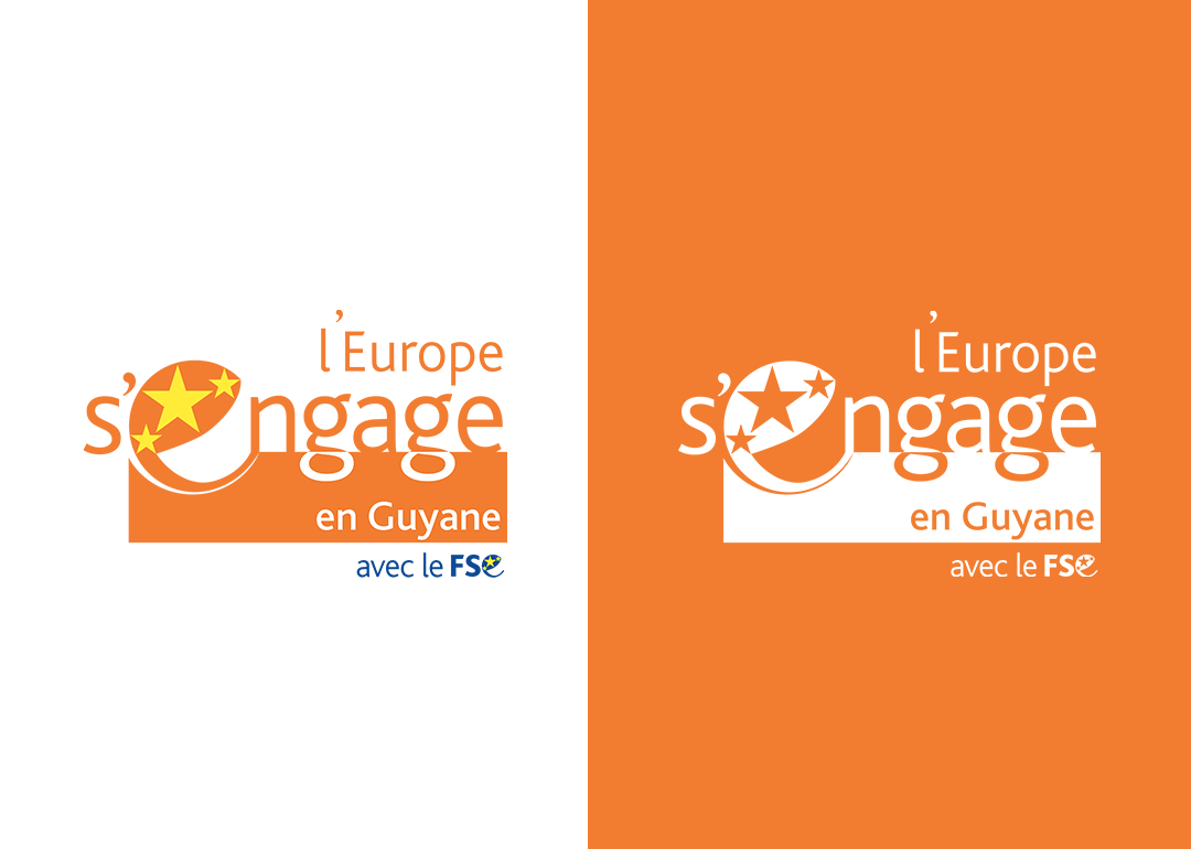 Logo-OrangeBLANC-BlancORANGE--FSE