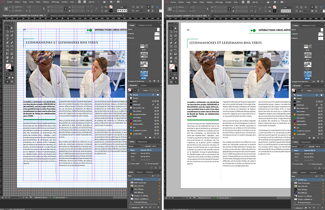 screen-indesign Montage 2